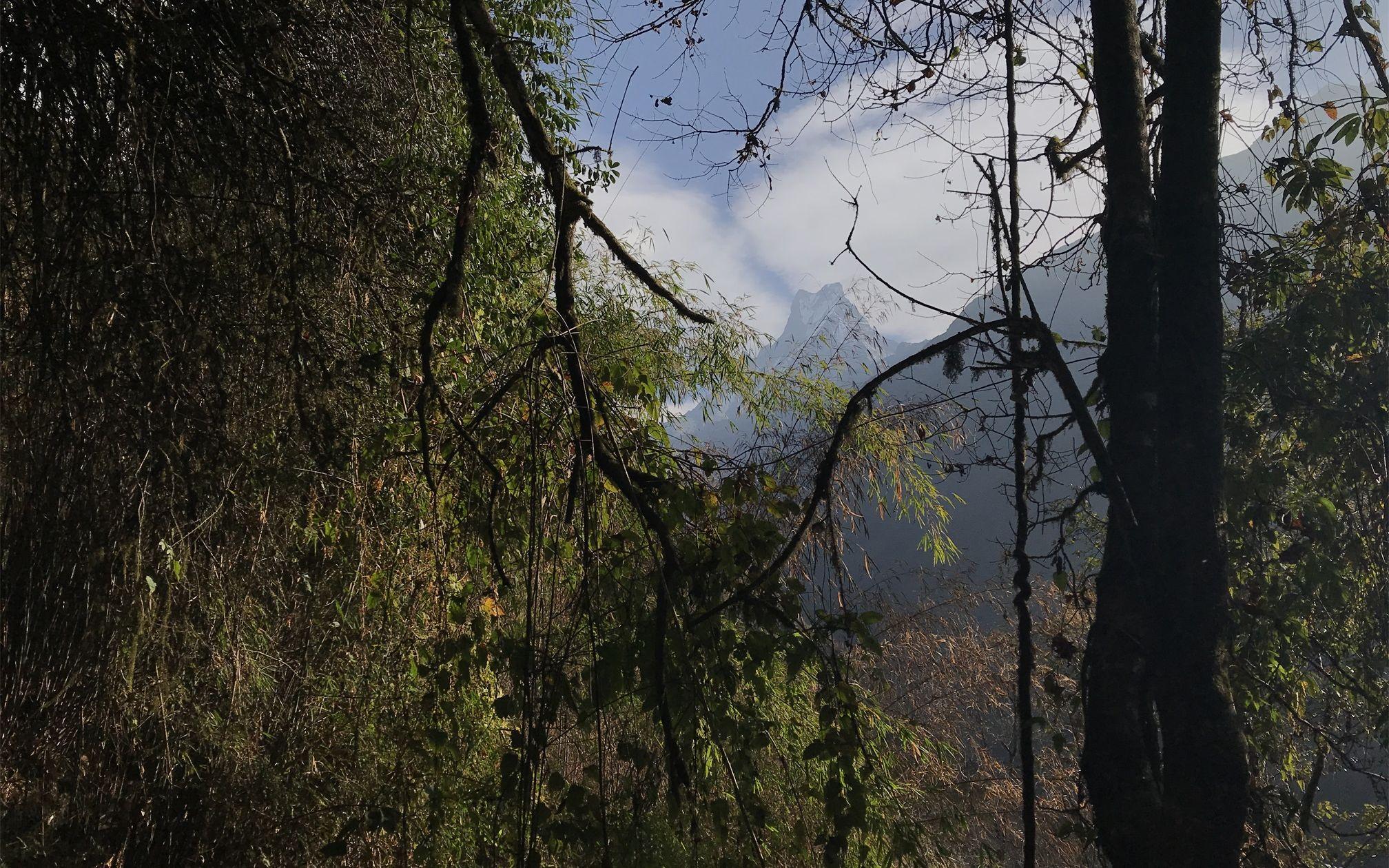 尼泊尔安娜普尔纳徒步记录(墨马作品)