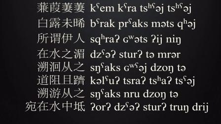 蒹葭-上古汉语读诗经