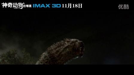 IMAX3D《神奇动物在哪里》预告之乱跑的动物