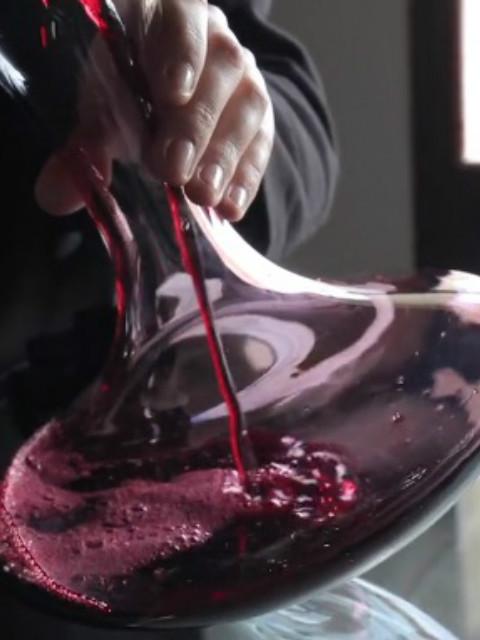 法国葡萄酒大师