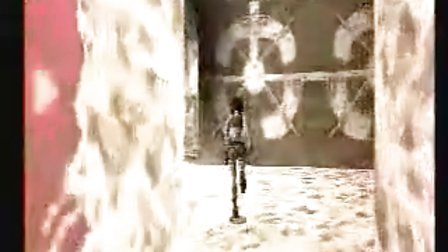 古墓丽影1视频攻略-14