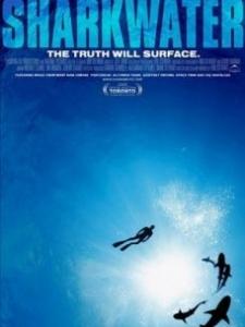 鲨鱼海洋电影_鲨鱼海洋-电影-高清在线观看-百度视频