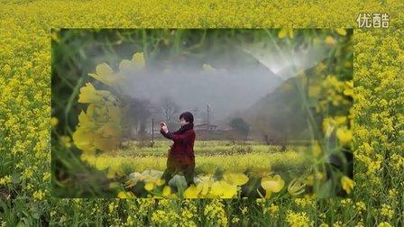 音画欣赏桂林山水田园风光景色美
