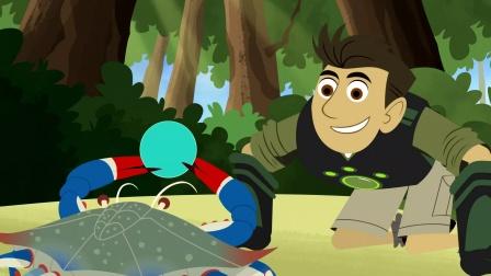 动物兄弟第五季英文版超级小野马