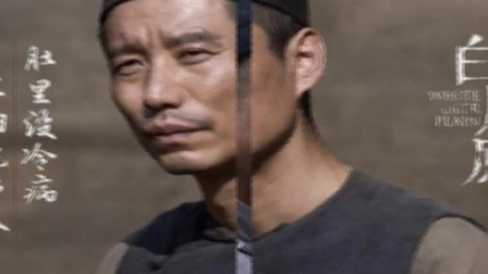 白鹿原电视剧总介绍