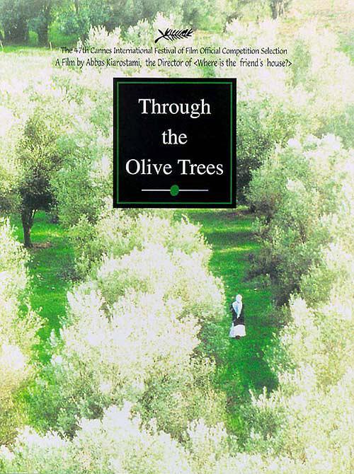 橄榄树下的情人