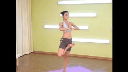 瑜伽孕妇瑜伽视频教程初级