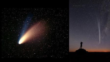 """彗星对母鸡做了什么? 每次经过地球, 就有母鸡生下""""彗星蛋""""!"""