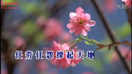 红蔷薇-老公老公不容易(国语)