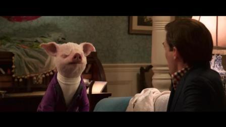 爆笑动画《比得兔》百度云资源片段