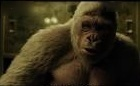 猩球崛起3.终极之战, 凯撒惩戒叛徒不小心失手杀死了。