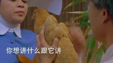 英叔正在洗澡一群修女围观, 鸡蛋真的孵出小鸡了, 这么神奇
