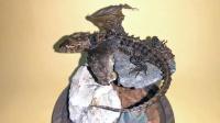 硬核女标本师让她的蜥蜴长出了翅膀,那不就是龙吗!