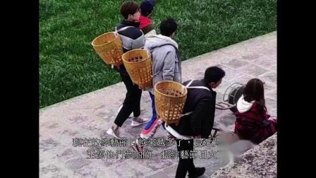 【哈哈农夫】杨超越和王源一起捡葱,杨超越伸手时,王源动