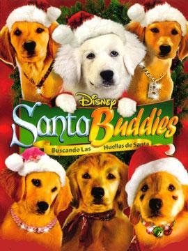 圣诞狗狗1