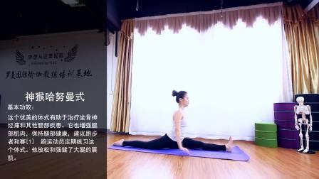 瑜伽视频教程——14神猴哈鲁曼