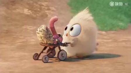 「愤怒的小鸟」小电影, 一只刚出生的小黄鸟逮到了一只小蚯蚓
