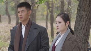 东风破第16集预告片