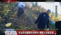 吉林警事——非法采伐国家珍贵树木 嫌疑人投案自首