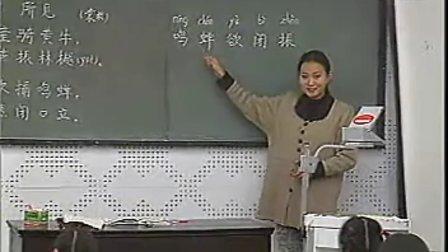 古诗《所见》小学语文优质课视频