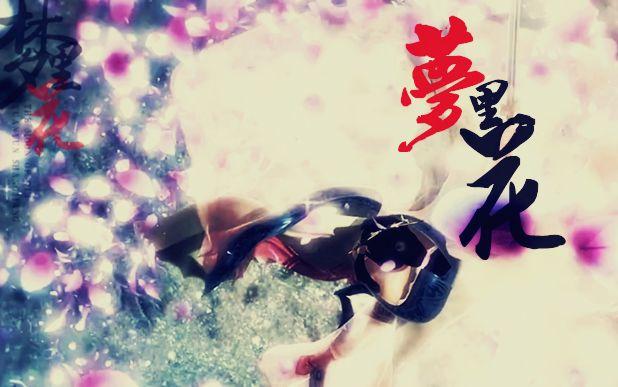 【轮回】【卫练/庄莲】【花树中心】《梦里花》-刻画着永恒的天堂