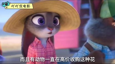 吖吖侃电影:几分钟看完美国动画电影《疯狂动物城》