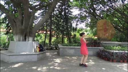 简单易学的舞蹈广场舞视频大全