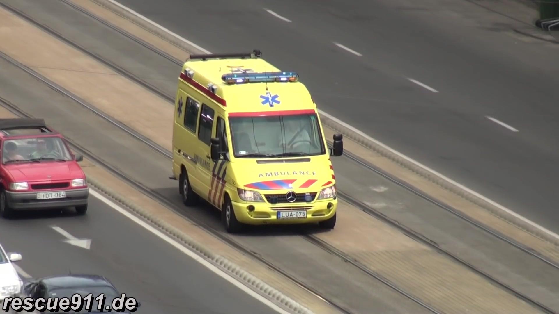 看完这个救护车,就知道荷兰为什么是电音天堂了。 这么好玩!