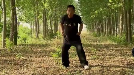 八极拳掌门吴连枝,展示刚猛八极实战,打拳猛如虎