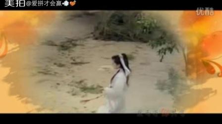 (古香古色)(二)之飞燕惊龙施思vs张詠詠vs尔东升板古装武侠影视mv