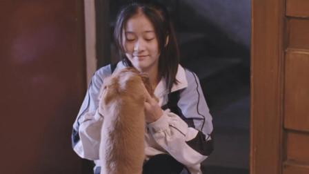 悲情的青春,迷茫的前路电影《狗十三》给了你最好的诠释