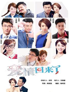 爱情回来了 DVD版 普通话
