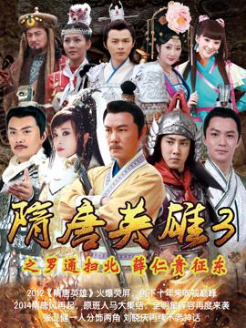 隋唐英雄 DVD版