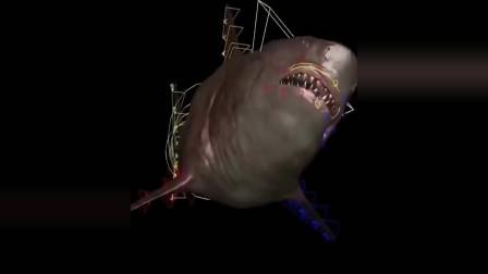 《巨齿鲨》特效剪辑大鲨鱼原来是这样做出来的