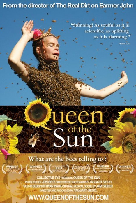 太阳女王:蜜蜂告诉我们什么?
