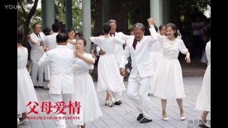 父母爱情电视剧(共44集)