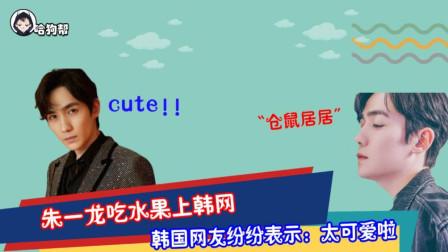 朱一龙吃水果登上韩网,腼腆又可爱,韩国网友:上辈子是小仓鼠转世吗?
