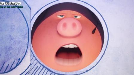欢乐好声音小猪之歌