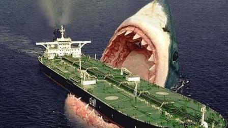 """生存于2300万年前的史前巨兽""""巨齿鲨""""重返浅海,人类惨遭残酷攻击"""