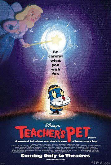 老师的宠物