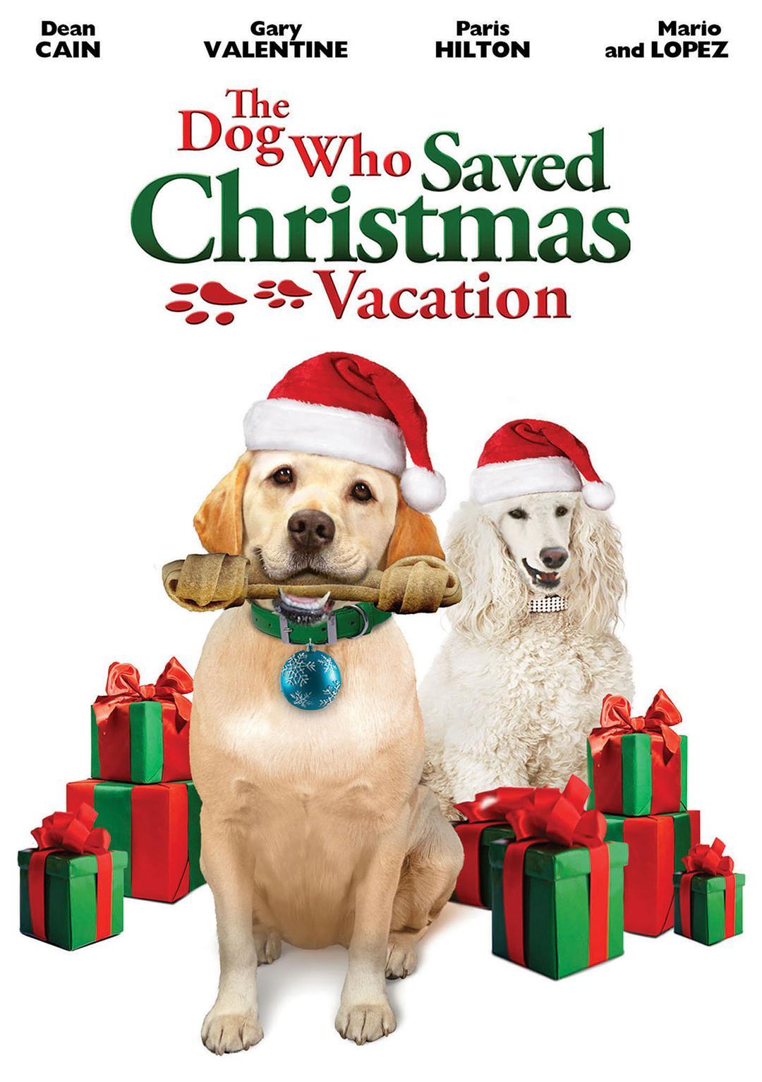 妙狗拯救圣诞节