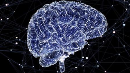 宇宙结构和人脑相似, 同样的网状结构, 我们活在宇宙的意识里?