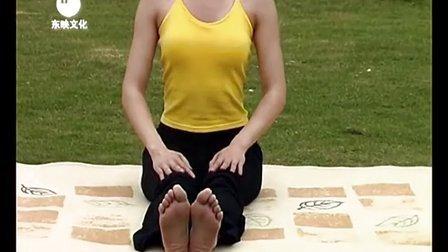 初级瑜伽入门基础教程