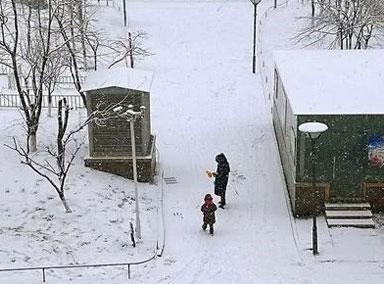 河南的雪是人工降雪引热议
