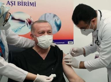 埃尔多安接种中国新冠疫苗
