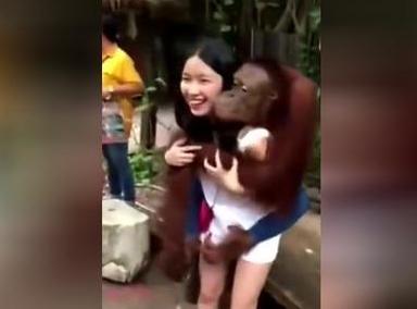 美女被猴子调戏,有时候真的觉得自己活着不如一只猴子