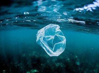 南澳州全面禁止一次性塑料制品