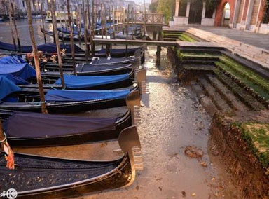 """意大利:""""水城""""威尼斯遇罕见低潮"""