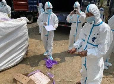 广东警方查获上百吨走私冻肉
