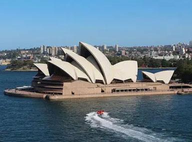 澳洲面临数十年来最严重鼠患